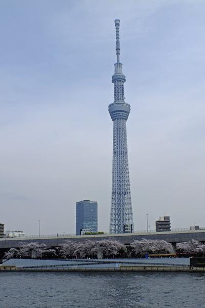 f:id:miyako2226:20130326223223j:image:w360