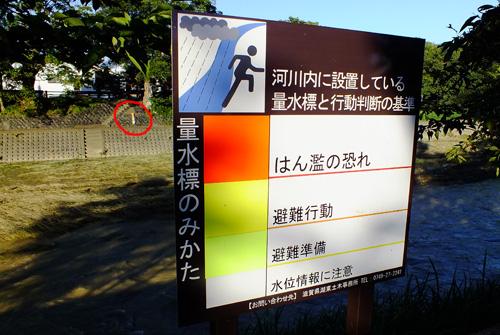 f:id:miyako2226:20130918224553j:image:w500
