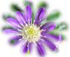 f:id:miyako2226:20131110142245j:image:right