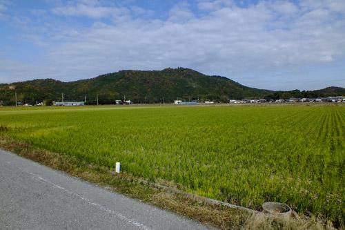 f:id:miyako2226:20131123163641j:image:w500