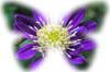 f:id:miyako2226:20131130174337j:image:right