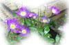 f:id:miyako2226:20131201092154j:image:right