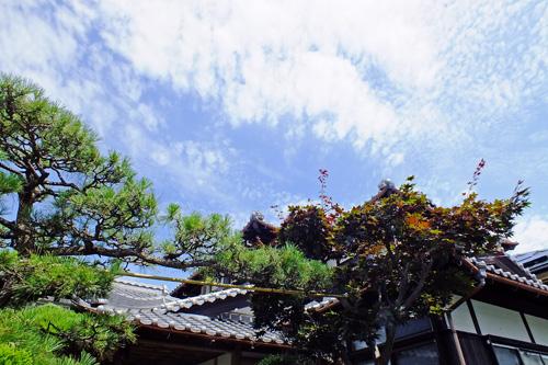 f:id:miyako2226:20140714015841j:image