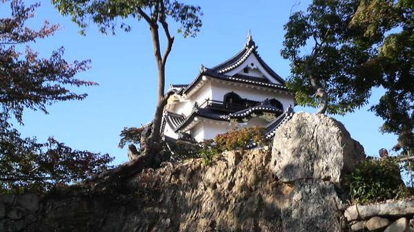 f:id:miyako2226:20141102171738j:image