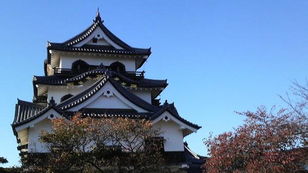 f:id:miyako2226:20141102172943j:image