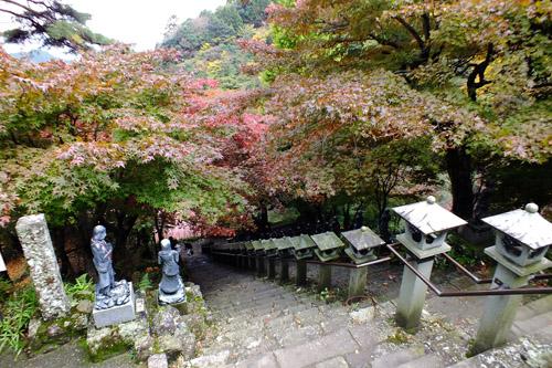 f:id:miyako2226:20151119001025j:image