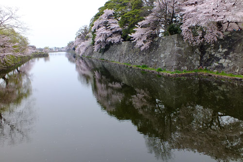 f:id:miyako2226:20160411002049j:image