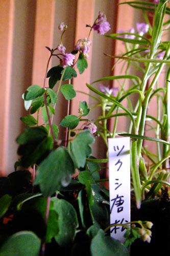 f:id:miyako2226:20160522003321j:image