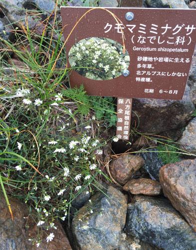 f:id:miyako2226:20160802151651j:image