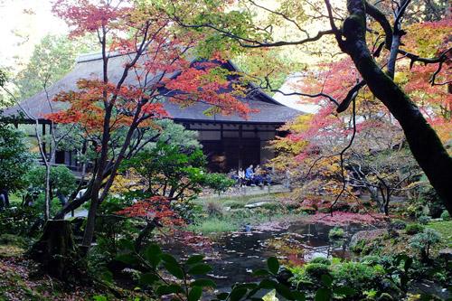 f:id:miyako2226:20161127003338j:image