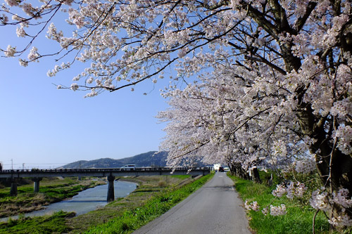 f:id:miyako2226:20170416164501j:image