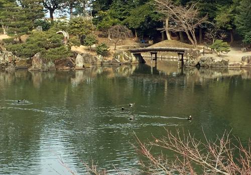 f:id:miyako2226:20180219223239j:image