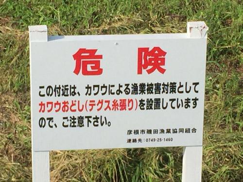 f:id:miyako2226:20190826182459j:plain