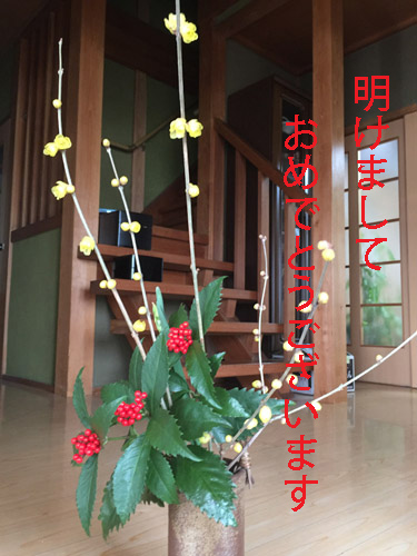 f:id:miyako2226:20200103154043j:plain