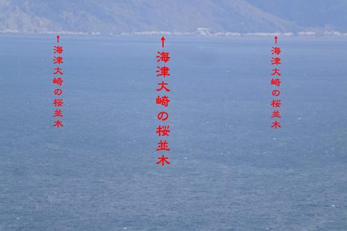 f:id:miyako2226:20200410191236j:plain