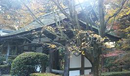f:id:miyakogu:20161126000404p:plain
