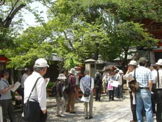 f:id:miyakogusa:20090512123343j:image
