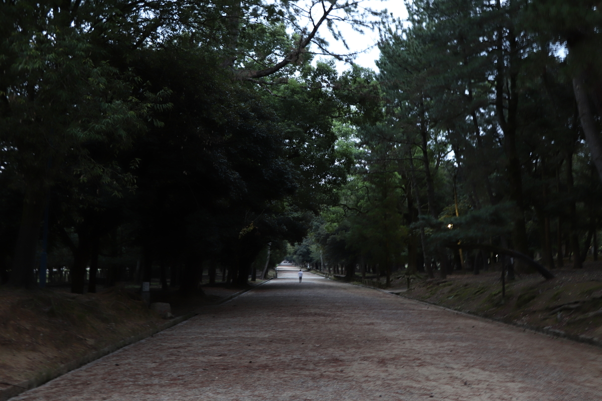 f:id:miyakoji-cityliner:20201130000055j:plain