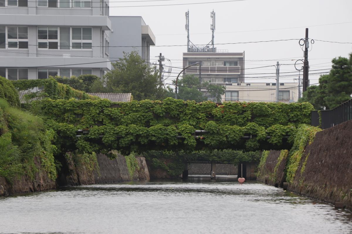 f:id:miyakoji-cityliner:20210102173545j:plain
