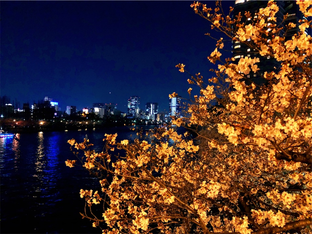 f:id:miyakojimaku:20190404231745j:image