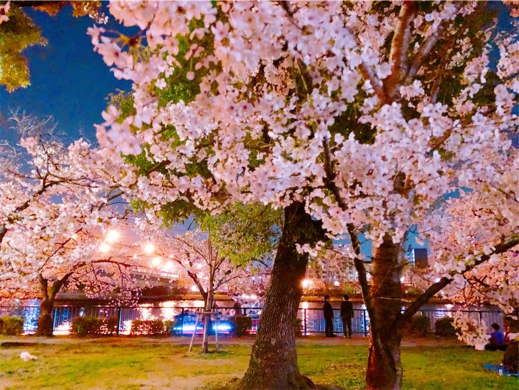 f:id:miyakojimaku:20190404231757j:image