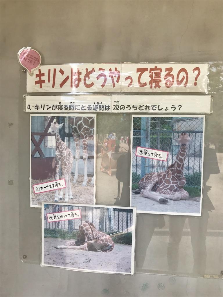 f:id:miyakokara:20170528083914j:image