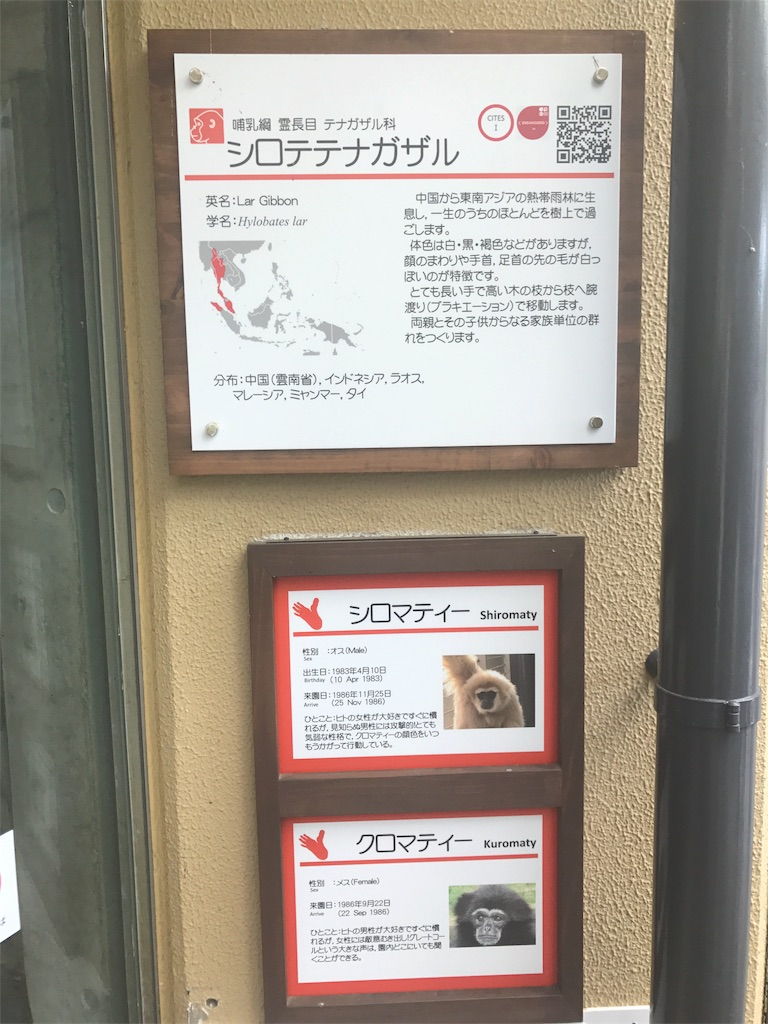 f:id:miyakokara:20170528083954j:image