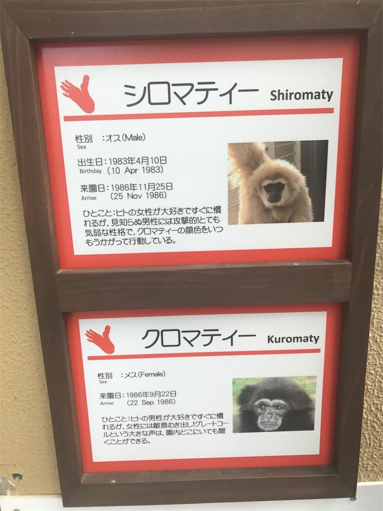 f:id:miyakokara:20170528084005j:image
