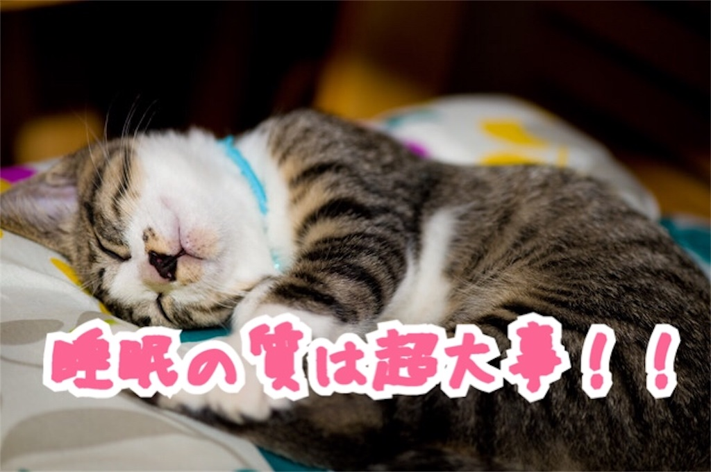 f:id:miyakokara:20180531055905j:image