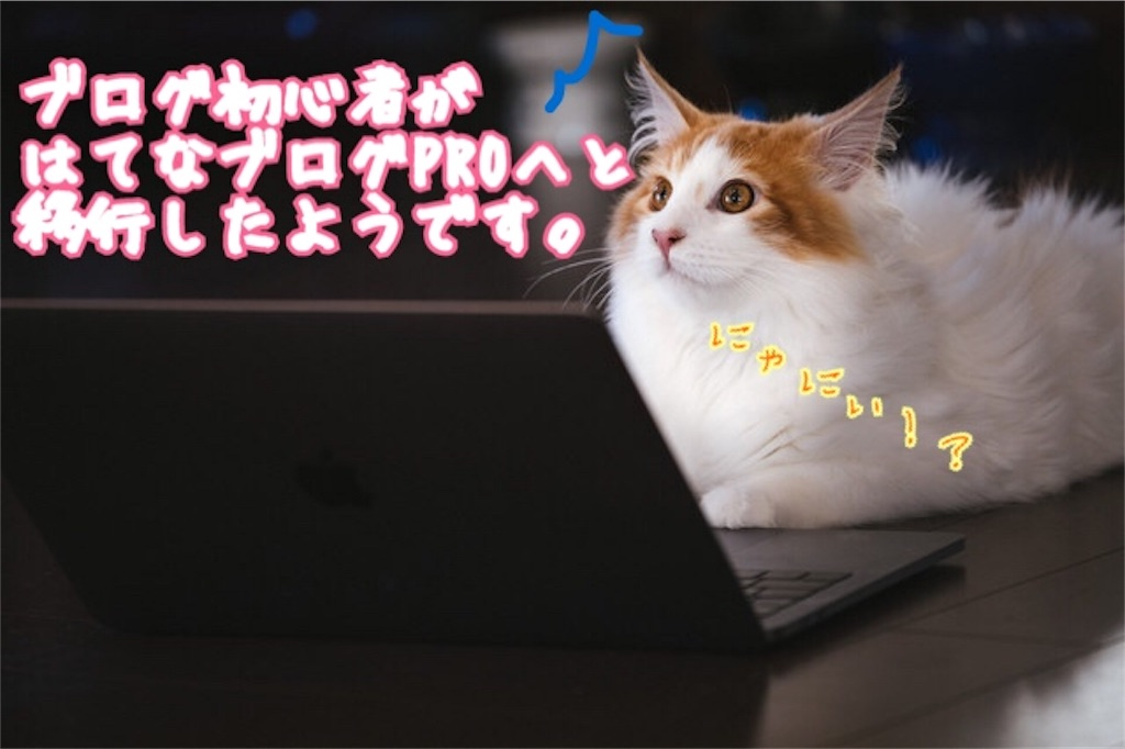 f:id:miyakokara:20180618071144j:image