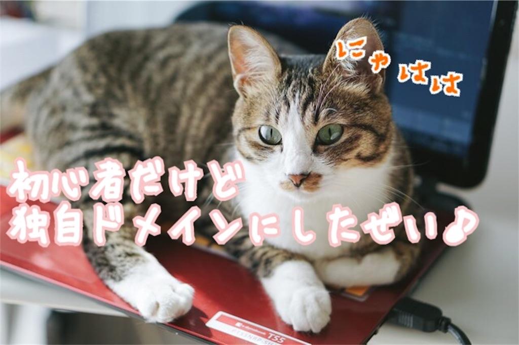 f:id:miyakokara:20180716180436j:image