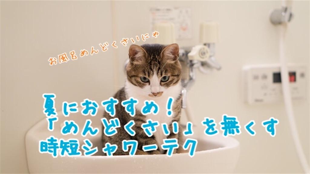 f:id:miyakokara:20180717143612j:image