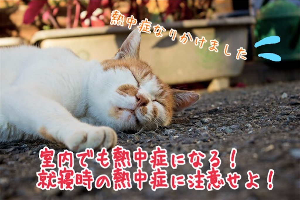 f:id:miyakokara:20180806175624j:image