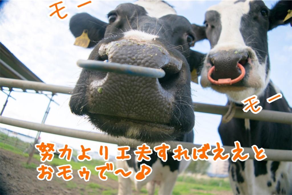 f:id:miyakokara:20180806191647j:image