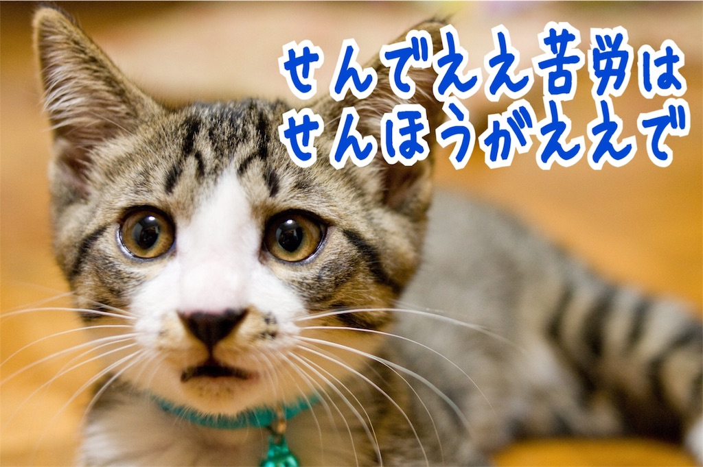 f:id:miyakokara:20180812210052j:image