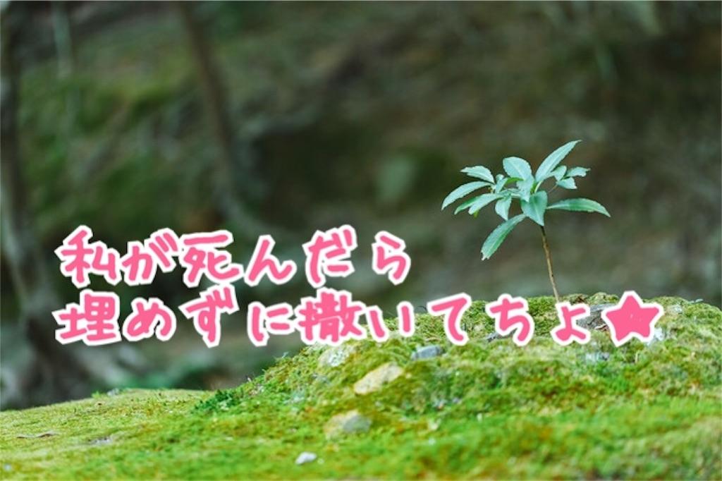 f:id:miyakokara:20180813050829j:image