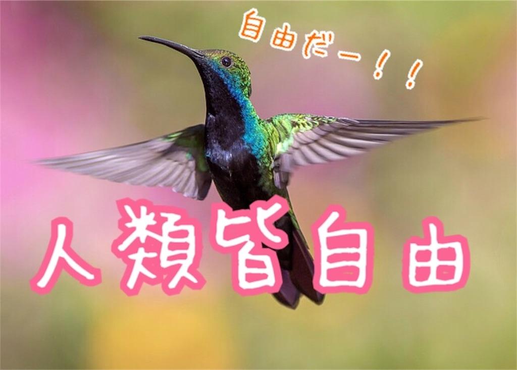 f:id:miyakokara:20180922231441j:image