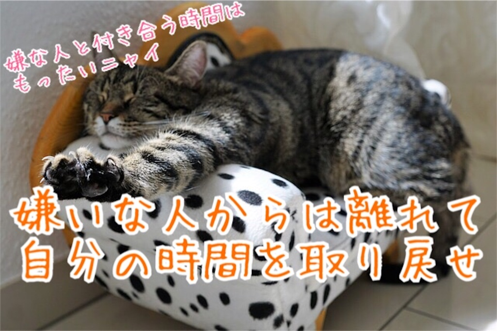 f:id:miyakokara:20181022173704j:image