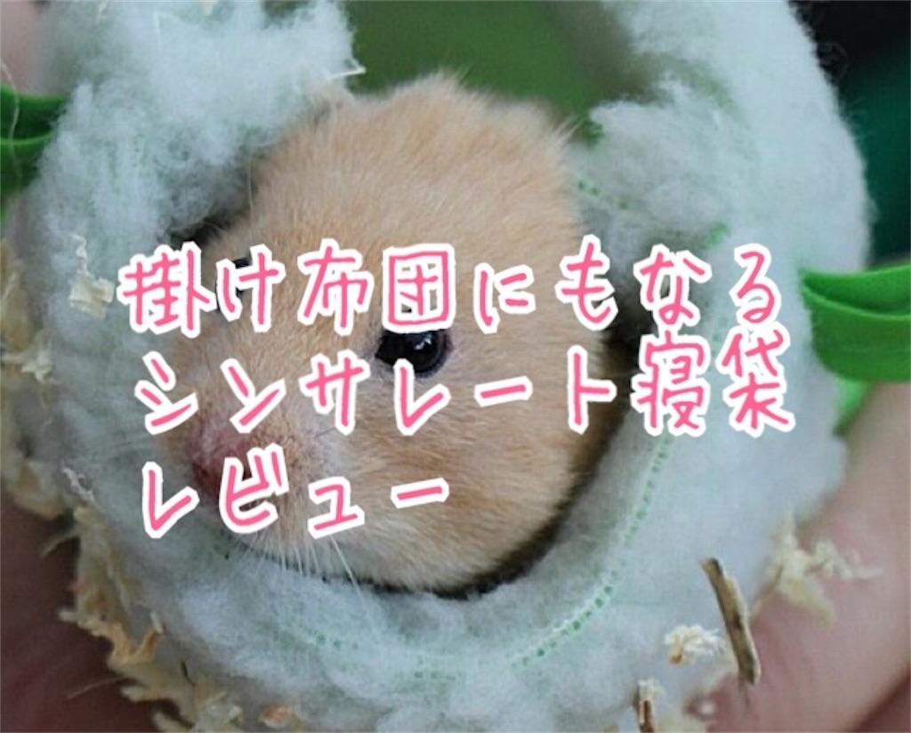 f:id:miyakokara:20181106194230j:image