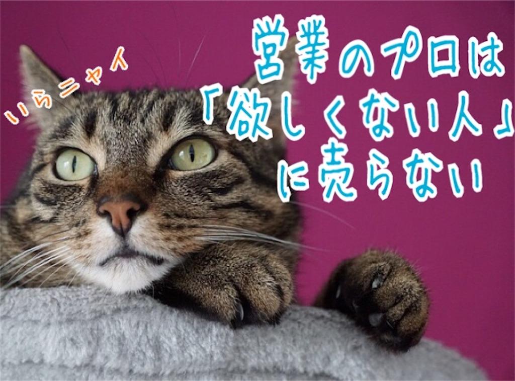 f:id:miyakokara:20181125131806j:image