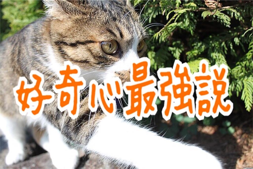 f:id:miyakokara:20181211213258j:image