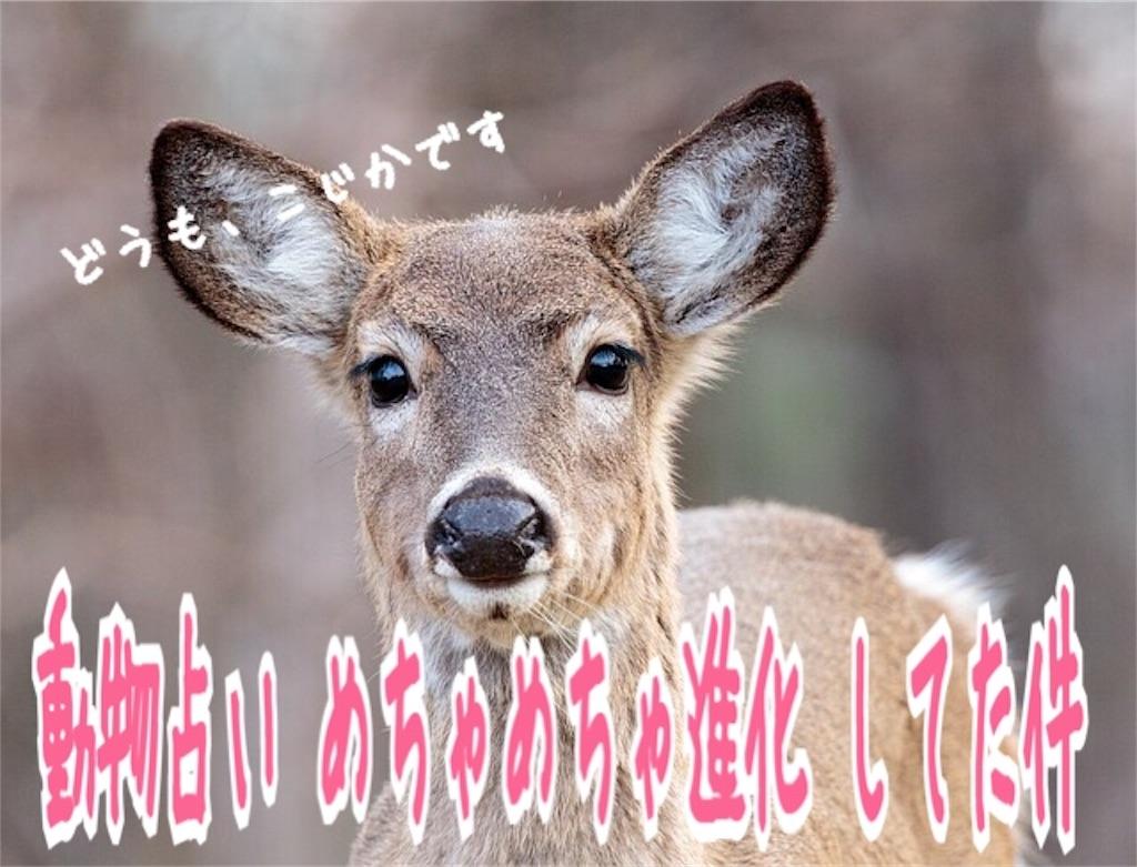 f:id:miyakokara:20181212100714j:image