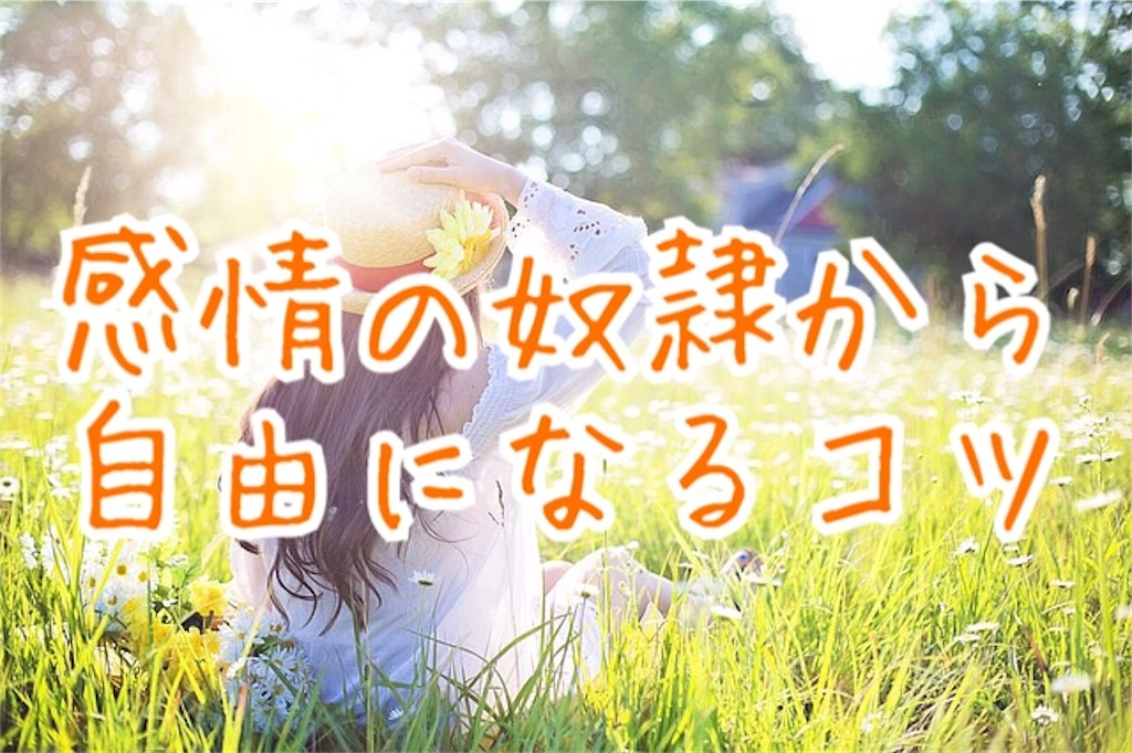 f:id:miyakokara:20181216035550j:image