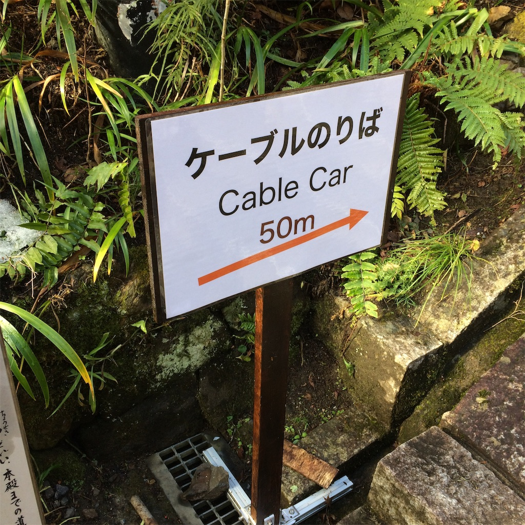 f:id:miyakokara:20190104083219j:image