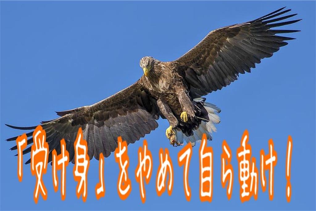 f:id:miyakokara:20190202073039j:image