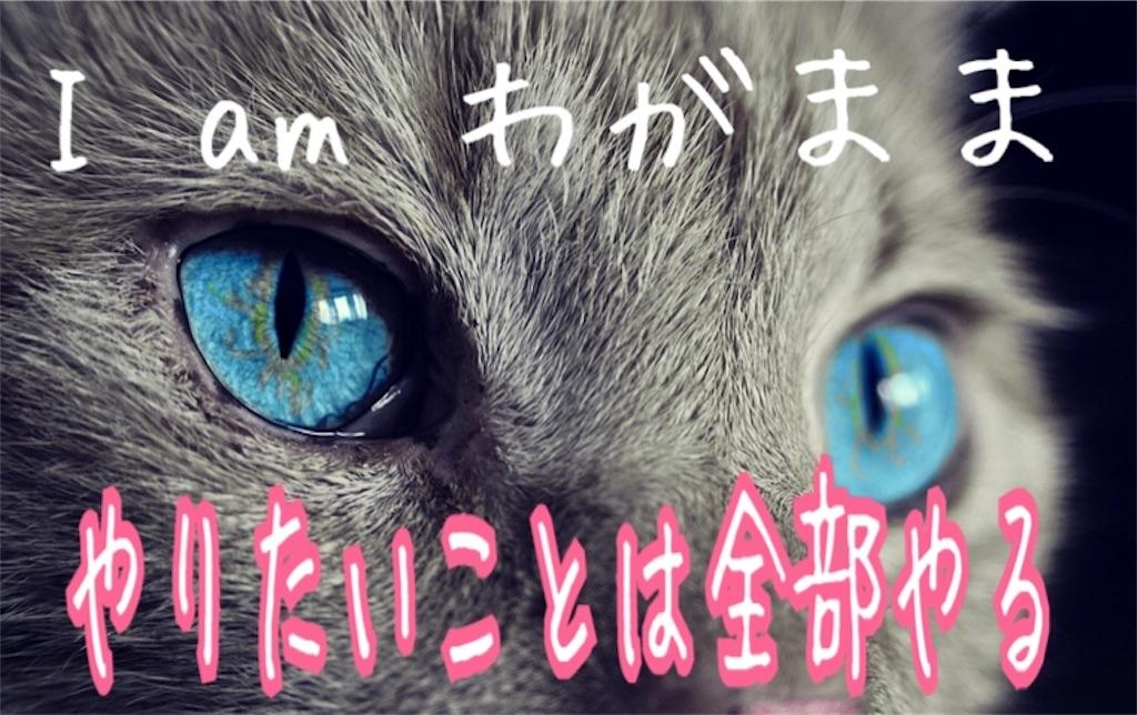 f:id:miyakokara:20190205175414j:image