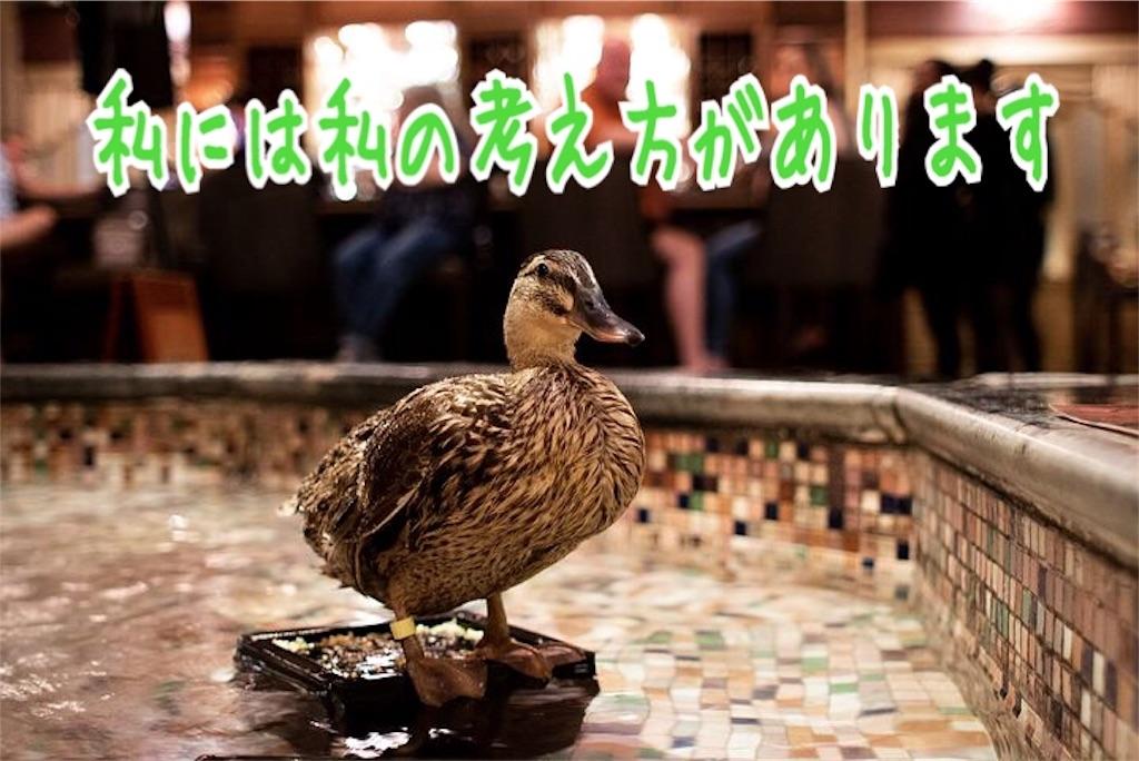 f:id:miyakokara:20190213231642j:image