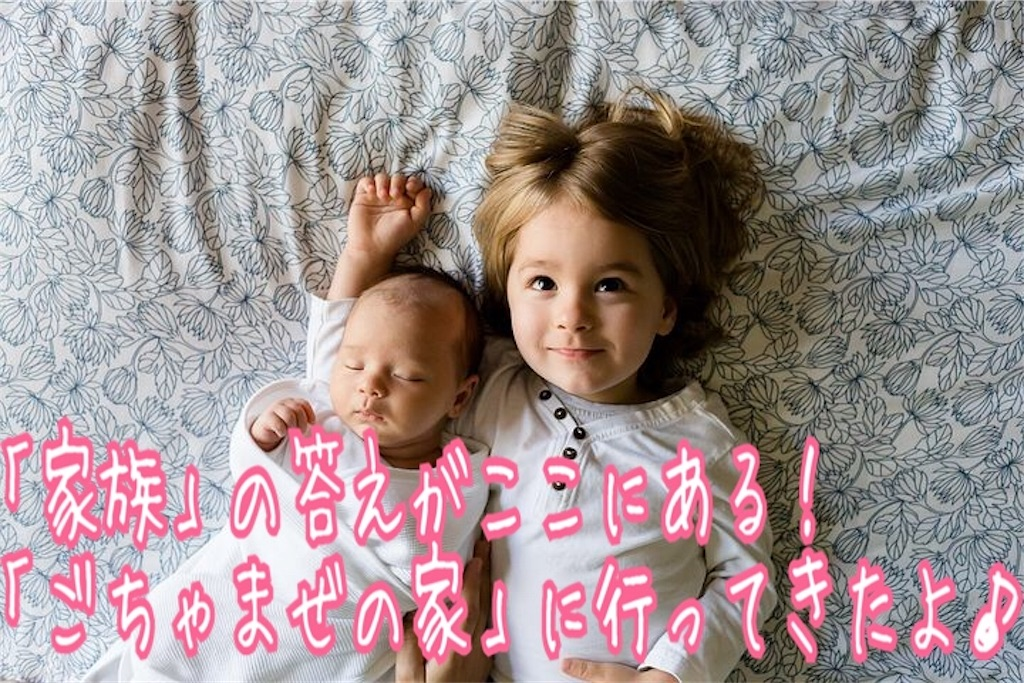 f:id:miyakokara:20190315220715j:image