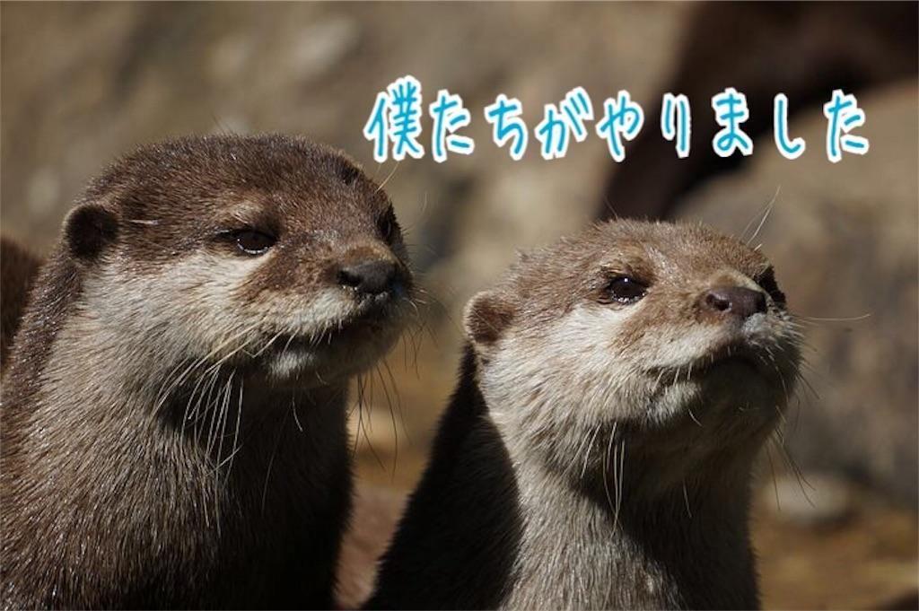 f:id:miyakokara:20190328000008j:image