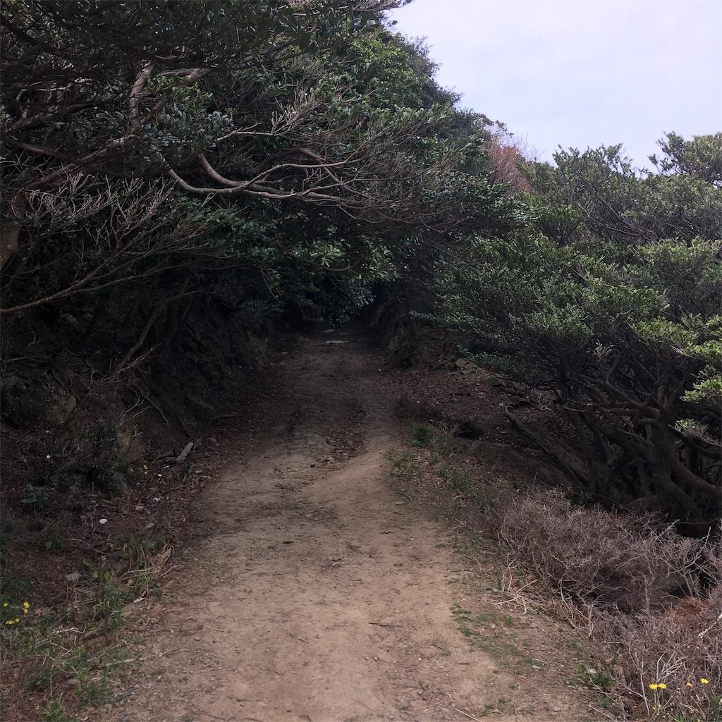 f:id:miyakokara:20190330204120j:image